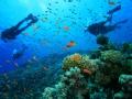 snorkeling_Fiji_maqai.com